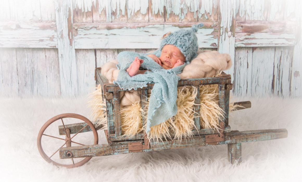 Newbornfotoshooting-15